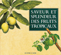 Saveurs et splendeurs des fruits tropicaux